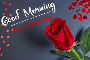 Beautifu Good Morning Images photo free download