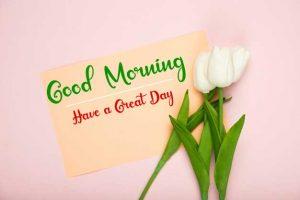 Beautifu Good Morning Images pics for download