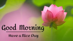 Beautifu Good Morning Images pictures free hd