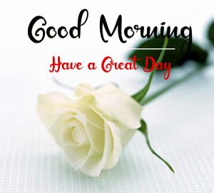 Beautifu Good Morning Images pictures hd