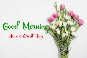 Beautifu Good Morning Images pictures hd download