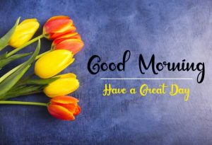 Beautifu Good Morning Images pictures photo pics download