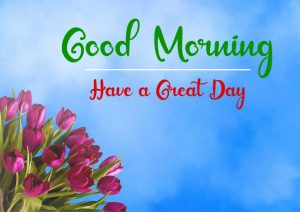 Beautifu Good Morning Images wallpaper download