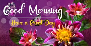 Beautifu Good Morning Images wallpaper hd