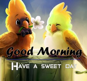 Beautiful P Friend Good Morning Photo Download