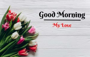 Beautiful Flower Good Morning Images photo for download