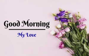 Beautiful Flower Good Morning Images pics download