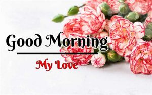 Beautiful Flower Good Morning Images pics for download