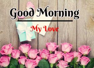 Beautiful Flower Good Morning Images pics pictures hd