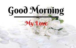 Beautiful Flower Good Morning Images pics wallpaper hd