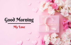 Beautiful Flower Good Morning Images pictures download