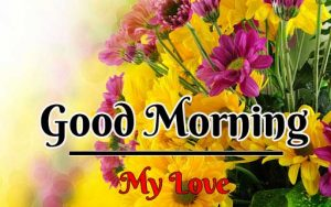 Beautiful Flower Good Morning Images pictures hd download