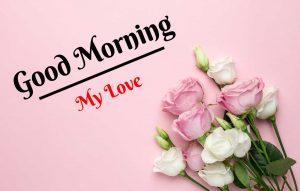 Beautiful Flower Good Morning Images wallpaper download