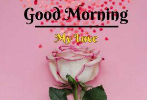 Beautiful Flower Good Morning Images wallpaper free hd