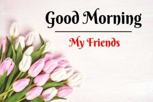 Beautiful Good Morning Images photo for download