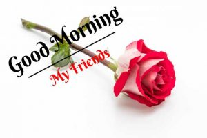 Beautiful Good Morning Images photo for free download