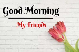 Beautiful Good Morning Images photo for free hd