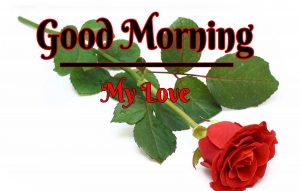 Beautiful Good Morning Images pictures for facebook