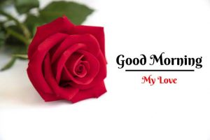Beautiful Good Morning Images pictures for free download