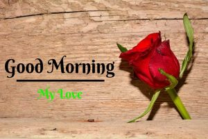 Beautiful Good Morning Images pictures for whatsapp
