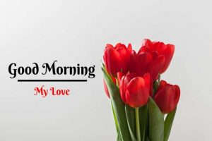 Beautiful Good Morning Images wallpaper for free download