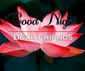 Beautiful Good Night Wishes Photo for Lotus