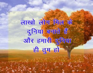 Beautiful Hindi Shayari Photo for Facebook