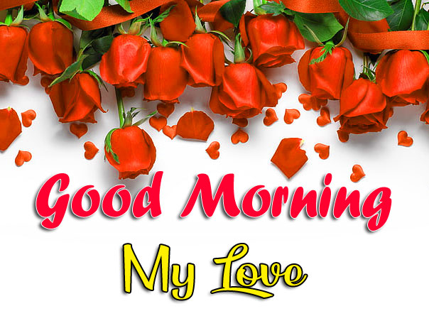 89+ Best Good Morning Images For Friends HD Download
