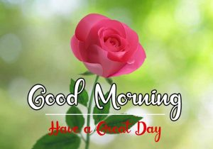 Best Good Morning Images photo hd download