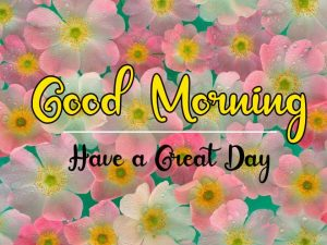 Best Good Morning Images pics free hd