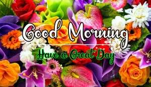Best Good Morning Images pics photo download hd