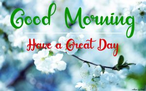 Best Good Morning Images pictures download