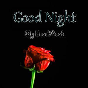 Best Good Night Hd Free Images
