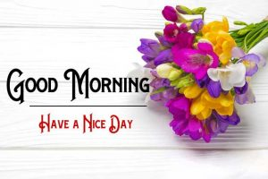 Flower Free p Good Morning Images Pics Download