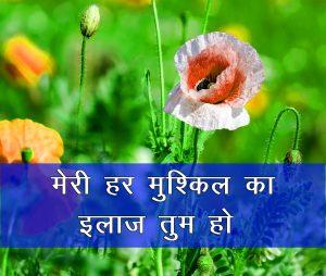 Flower Hindi Shayari Wallpaper