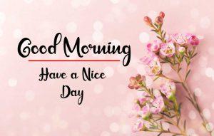 Flower New Best Good Morning Images photo for whatsapp