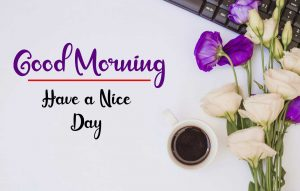 Flower New Best Good Morning Images pics photo hd