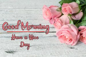Flower New Best Good Morning Images pictures download