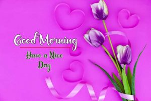Flower New Best Good Morning Images wallpaper for free download