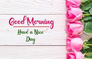 Flower New Best Good Morning Images wallpaper free hd