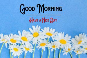 Free p Good Morning Images Wallpaper Download
