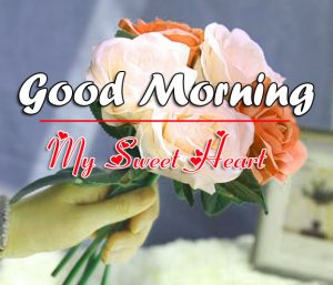 Free Beautiful Good Morning Images Photo Download