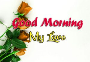 Free Beautiful Good Morning Images Wallpaper Downlaod