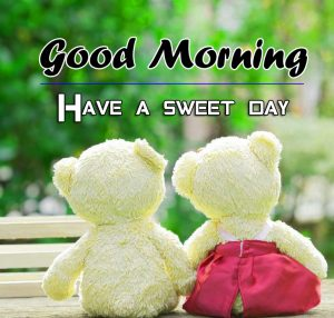 Free Beautiful Romantic Good Morning Images Collection