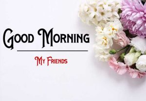 Free Flower p Good Morning Images Pics Download