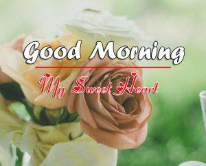 Free Good Morning Images Wallpaper Downlaod