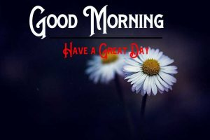 Free Good Morning Pic Download
