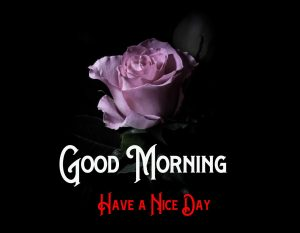 Free Good Morning Pictures Download