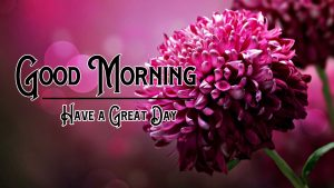 Free Good Morning Wishes Pics Download