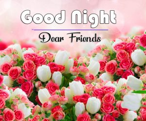 Free Good Night Wishes Pics Photo With Flower